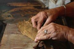 Kubański Cygarowy rolownik Obraz Royalty Free