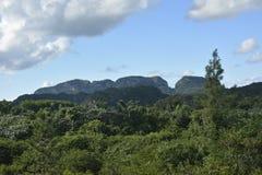 KUBA Valle de Viñales i Piñar del Rio de Janeiro Arkivbilder