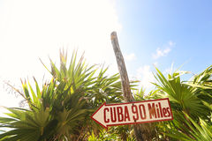 Kuba-Zeichen nahe Palme Stockfotos