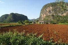 Kubanische Landschaft Lizenzfreie Stockfotos