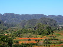 Kubanische Landschaft mit Mogotes und Palmen Stockfoto
