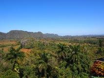 Kubanische Landschaft mit Palme Tdrees und Mogotes Lizenzfreie Stockfotografie