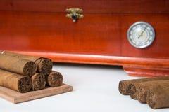 Kubansk cigarr och luftfuktare Arkivfoton