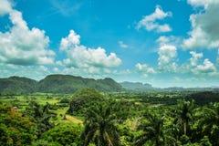 Kubansk djungel Fotografering för Bildbyråer
