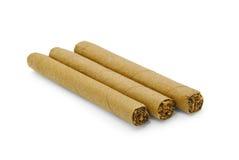 kubanska cigarrer Arkivfoton