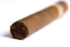 kubanska cigarrer Arkivbild
