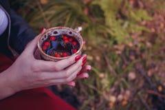 Kubek gorąca herbata w kobiety ręce jest jesienią w lasowym ulistnieniu Jesień przychodził, magiczny nastrój Czerwone jagody unos obrazy stock