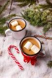 Kubek gorący kakao zdjęcia royalty free