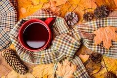 Kubek herbata zakrywał otacza szalika jesiennym tłem z spadać jedlinowymi rożkami i liśćmi klonowymi Kubka wygodny aromatyczny zdjęcie royalty free