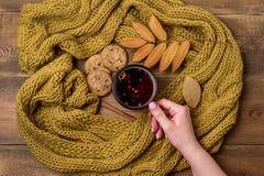 Kubek lub filiżanka Gorąca Jagodowa herbata Z koloru żółtego szalika jesieni Ciepłych Trykotowych liści klonowych tła Odgórnego w zdjęcia stock