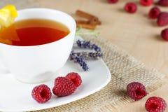 Kubek owocowa herbata Zdjęcia Stock