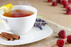 Kubek owocowa herbata Fotografia Royalty Free