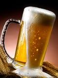 Kubek piwo Obraz Stock