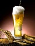 Kubek piwo Zdjęcie Stock