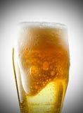 Kubek piwo Zdjęcia Royalty Free