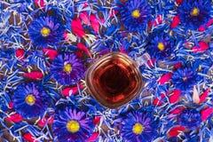 Kubek z czarnej herbaty i błękita kwiatami Zdjęcie Royalty Free
