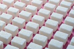 Kuber av förädlat vitt socker den korrekta geometriska formen på en rosa bakgrund Minimalistic abstrakt begreppscreensaver Royaltyfri Fotografi