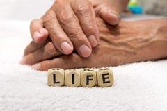 Kuber med ordlivet på bakgrunden av händerna av ett e royaltyfri bild