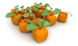 Kubiczna pomarańcze grupa royalty ilustracja