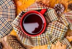 Kubka napoju wygodny aromatyczny szalik i kepi Gorący napój dla jesiennego spaceru Kubek herbata zakrywał otacza szalikiem jesien obrazy royalty free