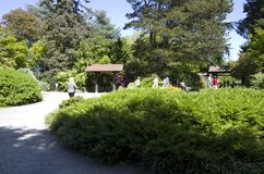 Kubota Japanese garden with bell, Seattle, May Stock Images