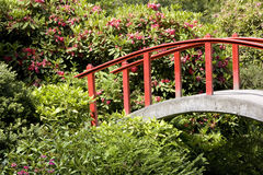 Kubota japanese garden Royalty Free Stock Image