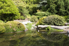 Kubota japanese garden Royalty Free Stock Photography