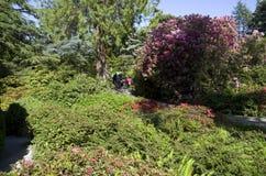 Kubota Japanese garden, Seattle, May Royalty Free Stock Photos