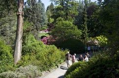 Kubota Japanese garden, Seattle, May Royalty Free Stock Photo