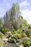 Kubota japanträdgård Arkivfoton