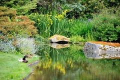 Kubota trädgård, Seattle Arkivfoto