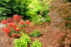 Kubota trädgård, Seattle Royaltyfri Fotografi