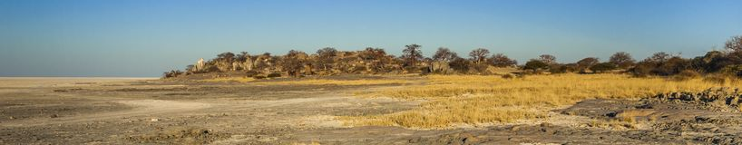 Kubu Island, Botswana. Kubu Island with baobabs and rocks, Botswana, Africa Royalty Free Stock Images