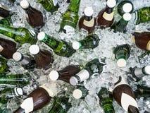 Kubussen van ijs en kleurrijke flessen met koud bier royalty-vrije stock fotografie