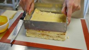 Kucbarski brać out warstwa tort od tort formy zdjęcie wideo