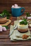 Kuchen in drei Farben mit Eiscreme und Schokolade lizenzfreies stockfoto