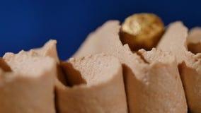 Kuchen mit Sahne und Muttern Schokoladenkuchen mit Nüssen und Schokoladensplittern Schokoladenkaramelkleiner kuchen mit Nüssen un stock footage