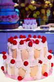 Kuchenaufnahme Lizenzfreie Stockbilder