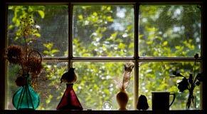 kuchenny okno Obraz Stock