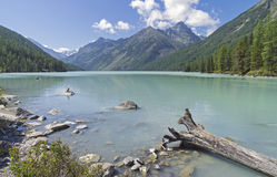 Kucherla lake. Altai Mountains, Russia. Stock Images