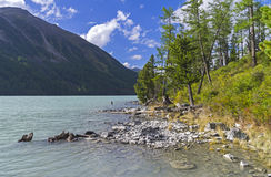 Kucherla lake. Altai Mountains, Russia. Royalty Free Stock Photo
