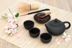 Kuchika asó té verde de la ramita Fotografía de archivo libre de regalías
