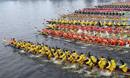 The paddel boat race Royalty Free Stock Image