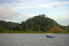 Kuching Wetland National Park, Borneo, Sarawak, Malaysia Royalty Free Stock Photography