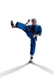 Kudo-Kämpfer sind das Kämpfen lokalisiert lizenzfreies stockbild