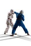 Kudo-Kämpfer sind das Kämpfen lokalisiert lizenzfreie stockbilder