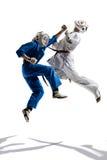 Kudo-Kämpfer sind das Kämpfen lokalisiert stockfoto