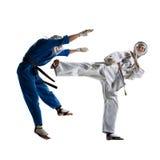 Kudo-Kämpfer sind das Kämpfen lokalisiert stockfotos