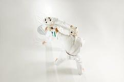 Kudo Karatekämpfer stockfotografie