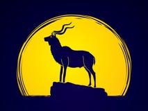 Kudu que se coloca en el acantilado ilustración del vector
